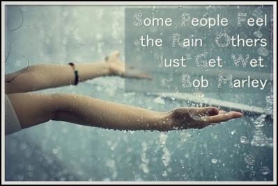 rain bob